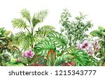 hand drawn flowers and leaves... | Shutterstock . vector #1215343777