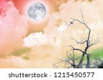 bare tree with small bird and... | Shutterstock . vector #1215450577