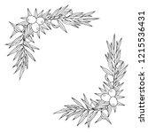 hand drawn olive branch corner. ... | Shutterstock .eps vector #1215536431