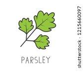 parsley line vector... | Shutterstock .eps vector #1215660097