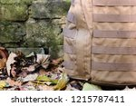 close up detail of the exterior ... | Shutterstock . vector #1215787411