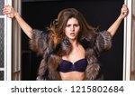 female lover enter bedroom...   Shutterstock . vector #1215802684