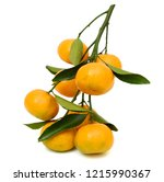rip tangerine fruits with... | Shutterstock . vector #1215990367