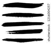 vector set of hand drawn brush...   Shutterstock .eps vector #1216004257