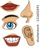 illustration of different parts ... | Shutterstock .eps vector #121602691