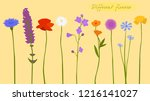 wild flowers  colorful ... | Shutterstock .eps vector #1216141027