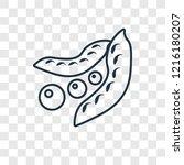 peas concept vector linear icon ... | Shutterstock .eps vector #1216180207