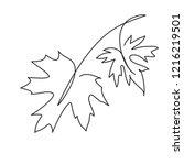 maple leaf line art. contour... | Shutterstock .eps vector #1216219501