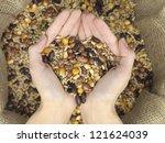 Grain Mix Raffia Bag Held Over...