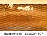 close up of bees on honeycomb... | Shutterstock . vector #1216294507