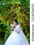 the bride in a beautiful dress | Shutterstock . vector #1216326031