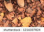 leather boots on the fallen... | Shutterstock . vector #1216337824