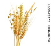 yellow ripe spikelets and... | Shutterstock .eps vector #1216340074