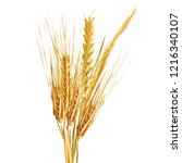 yellow ripe spikelets and... | Shutterstock .eps vector #1216340107