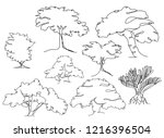 continuous one line drawing of...   Shutterstock .eps vector #1216396504