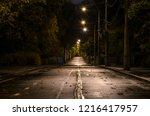 Empty Street At Night. City...