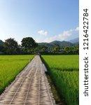 bamboo side walk | Shutterstock . vector #1216422784