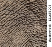 Texture Of Elephant Skin Use...