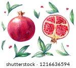 pomegranates watercolor set | Shutterstock . vector #1216636594