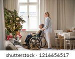 a senior woman in wheelchair... | Shutterstock . vector #1216656517