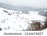 winter in schwarzwald....   Shutterstock . vector #1216676827