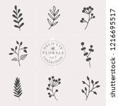 a set of nine hand drawn floral ... | Shutterstock .eps vector #1216695517