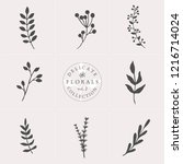 a set of nine hand drawn floral ... | Shutterstock .eps vector #1216714024