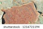green rusty metal texture... | Shutterstock . vector #1216721194