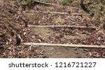 wooden pathway in spring forest ... | Shutterstock . vector #1216721227
