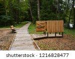 wooden beach cloakroom and... | Shutterstock . vector #1216828477
