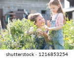 mother with her young daughter...   Shutterstock . vector #1216853254