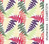 fern frond herbs  tropical... | Shutterstock .eps vector #1216857274