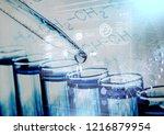 blood test laboratory analysis... | Shutterstock . vector #1216879954