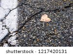 abstract street photography of... | Shutterstock . vector #1217420131