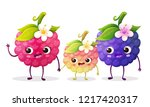 cute blackberry and raspberry... | Shutterstock .eps vector #1217420317