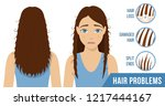 hair care. common problems  ... | Shutterstock .eps vector #1217444167
