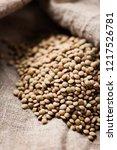 raw healthy brown lentil ... | Shutterstock . vector #1217526781