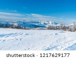 view of snowy landscape in...   Shutterstock . vector #1217629177
