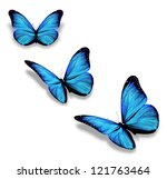 Three Blue Butterflies ...