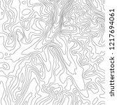 topographic map  black line on... | Shutterstock .eps vector #1217694061