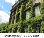 Green Plants Cover Over A...