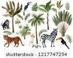 Stock vector tropical tree elements such as palm banana and jungle animals isolated 1217747254