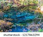 kaminoko pond is located on the ...   Shutterstock . vector #1217863294