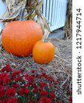 Two Pumpkins On Hay Bale With...