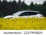 riga  may 2018   nissasn leaf   ... | Shutterstock . vector #1217993824