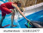Woman Trainer And Dolphin....