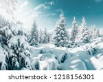 gorgeous white spruces on a... | Shutterstock . vector #1218156301
