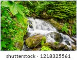waterfall in triberg ...   Shutterstock . vector #1218325561