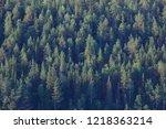 texture coniferous forest top... | Shutterstock . vector #1218363214