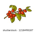 coffee branch with leaf and... | Shutterstock .eps vector #1218498187
